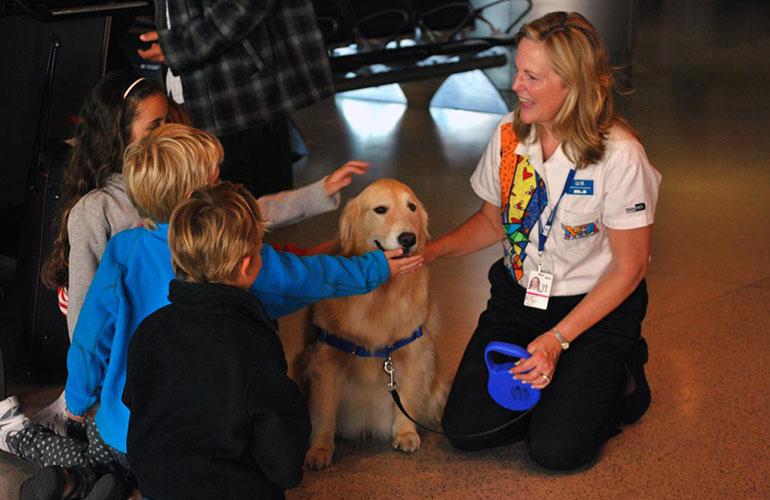 Miami Airport Training Dog Casey