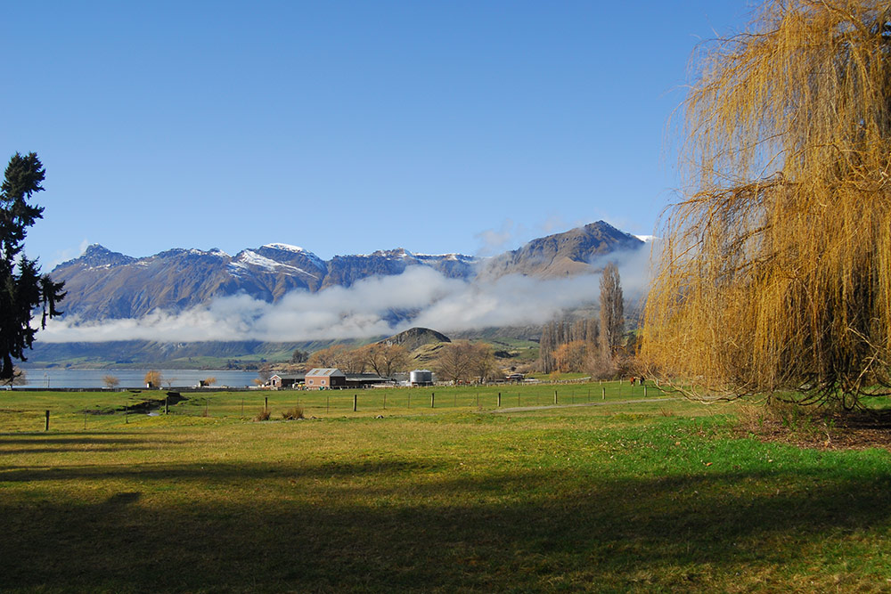 Mount Nicholas Station, Queenstown, New Zealand