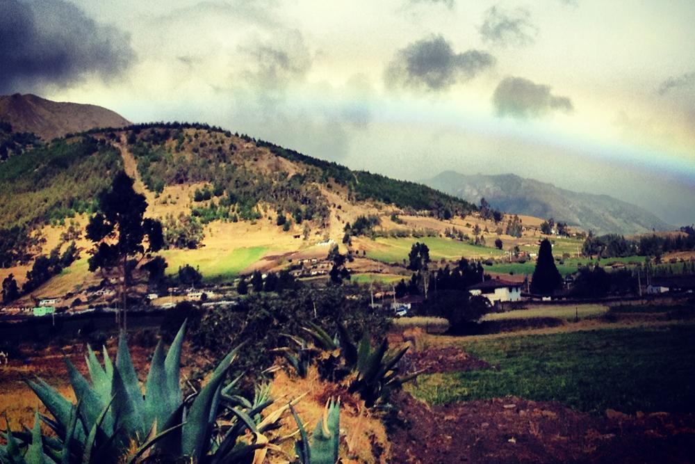 Andean highlands landscape, Ecuador