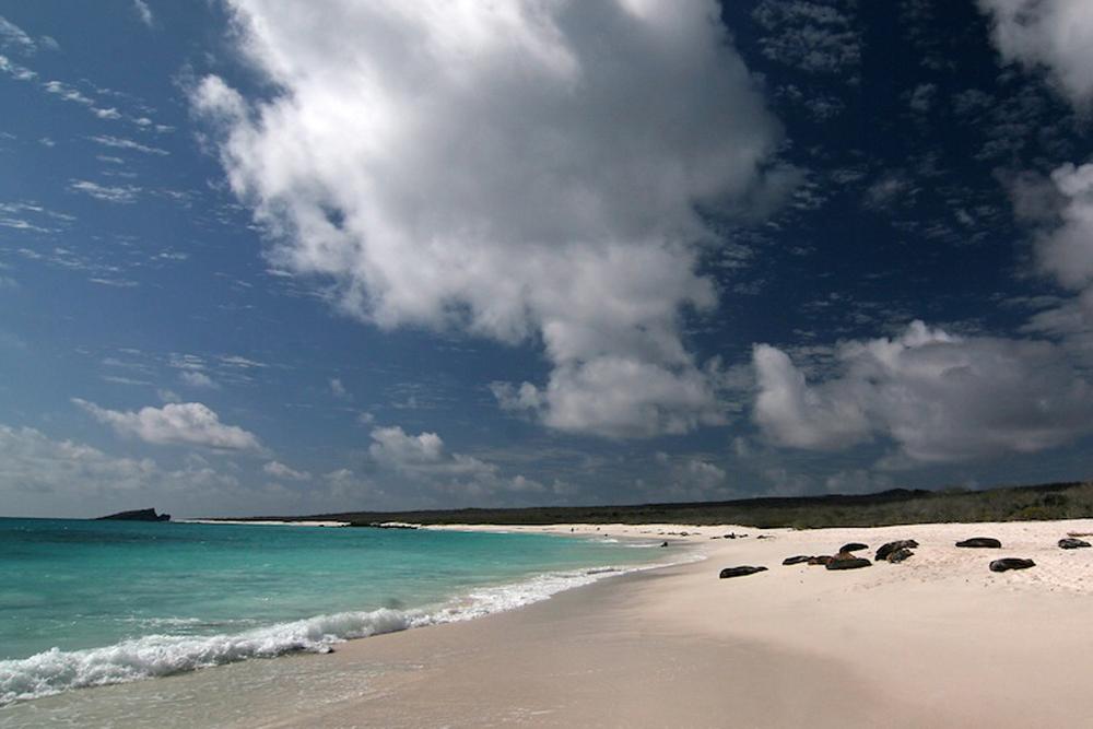 Gardner bay, Galapagos Island, beach
