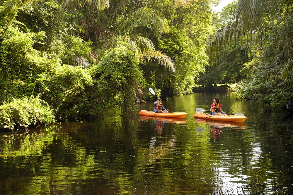 Kayaking in Tortuguero National Park