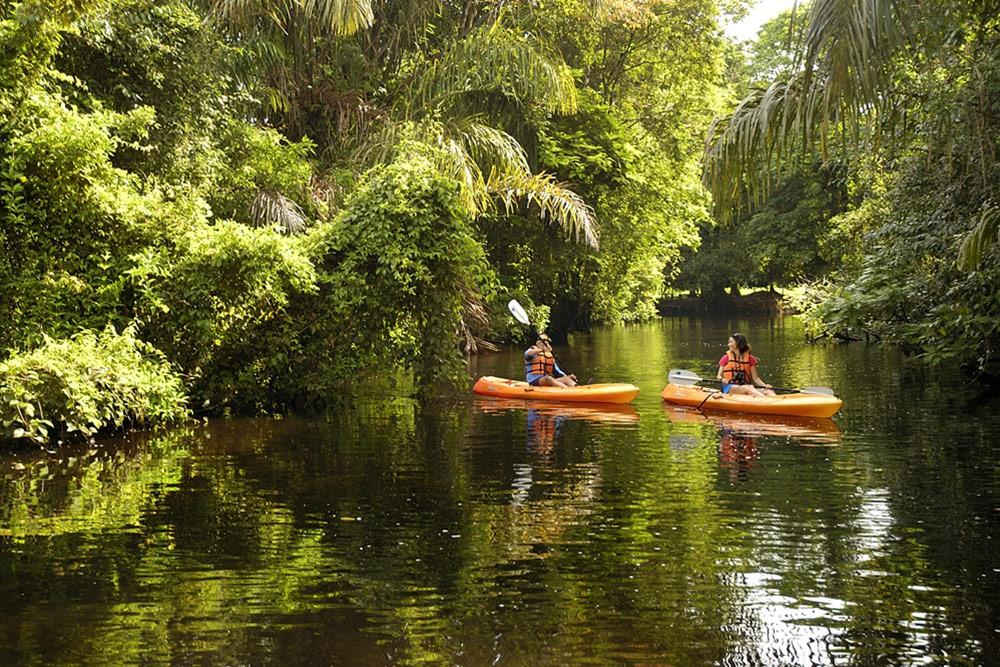 Kayaking in Tortuguero National Park