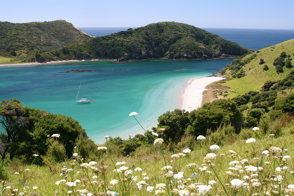Stingray Cove, Bay of Islands, New Zealand