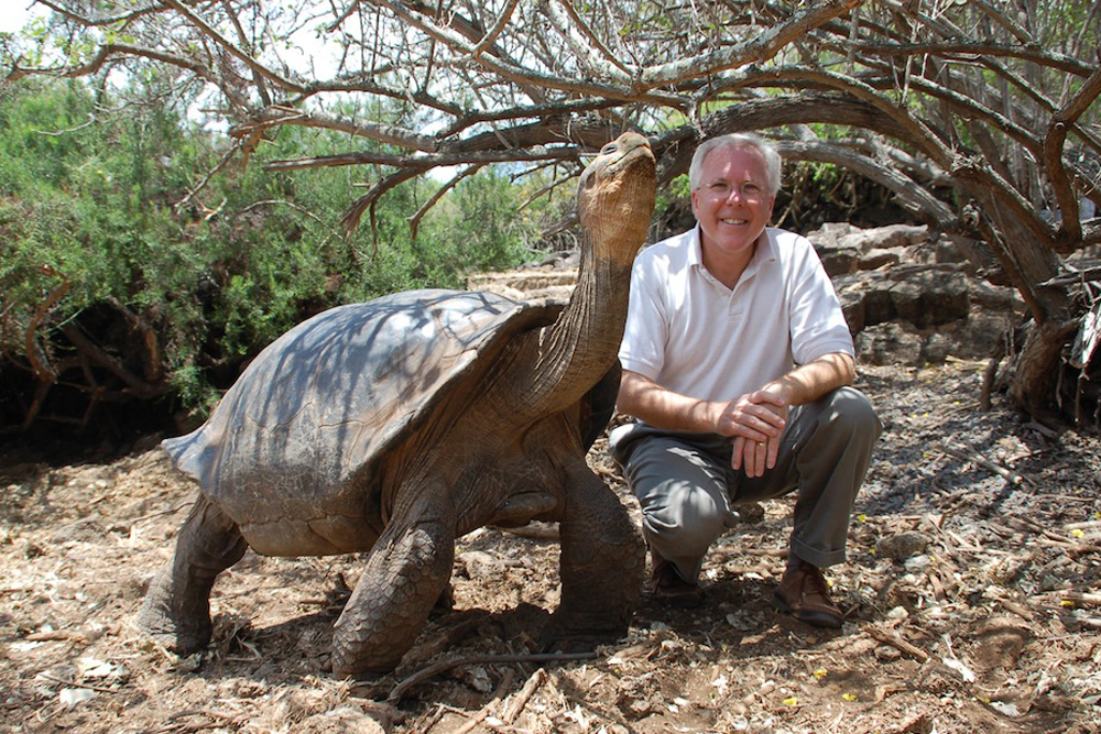 tortoise on the galapagos islands