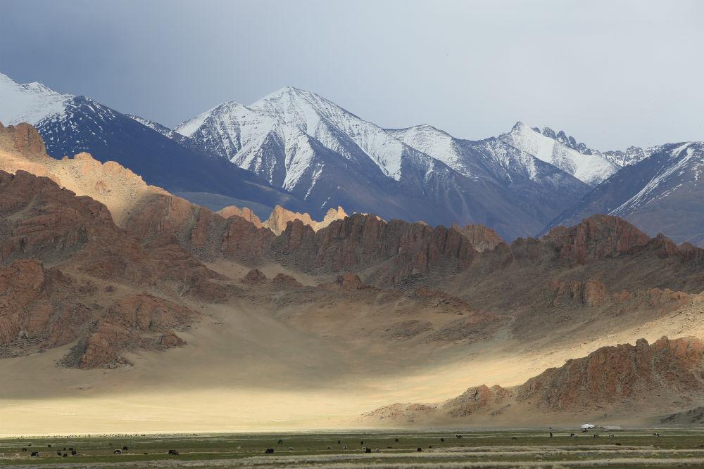 A Mongolian vista
