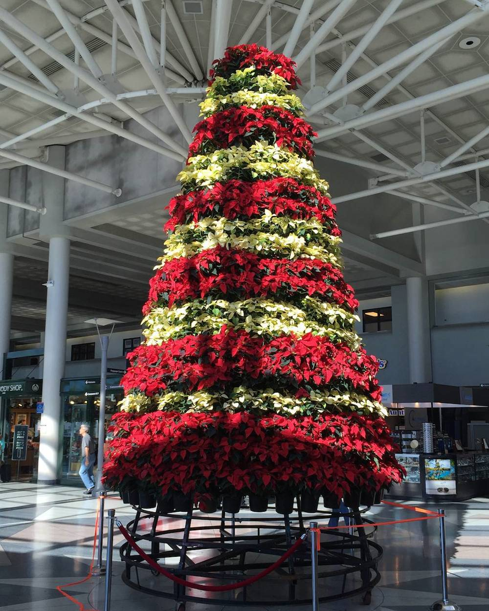 Charlotte Airport Christmas Tree
