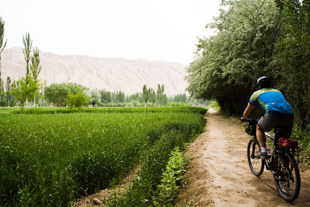 Silk Road, China, biking