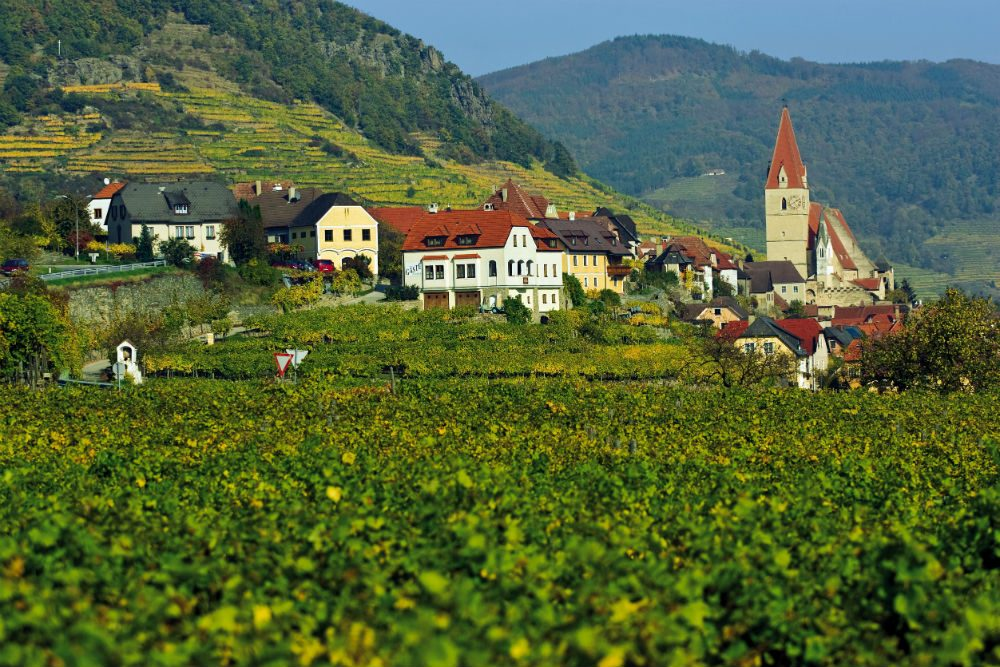 Wachau Austria view of village and green field