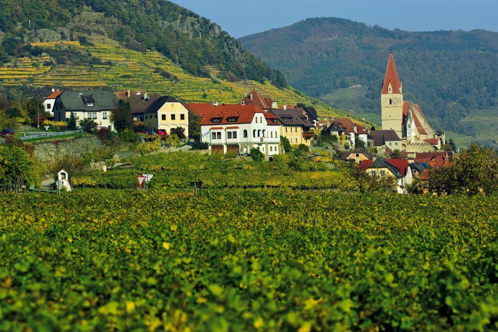 Wachau Austria view of village and green field