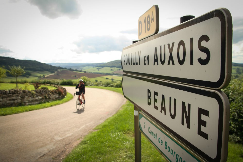 bicyclist in Burgundy france wine country