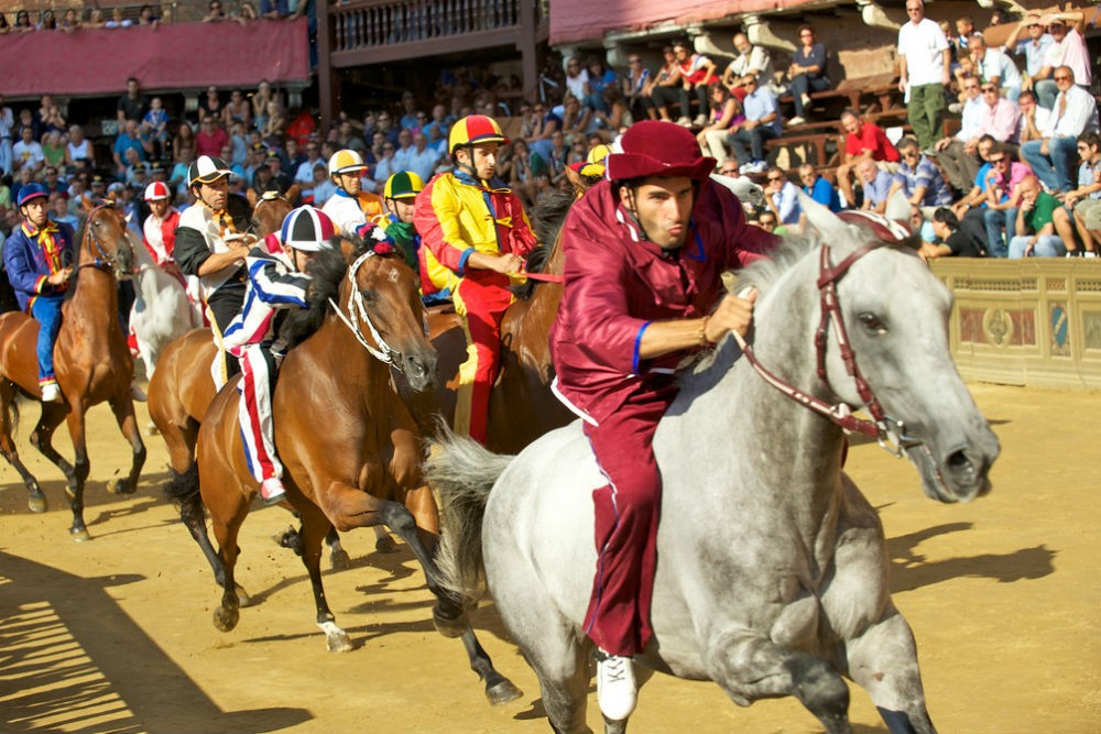Palio di Siena Janus Kinase