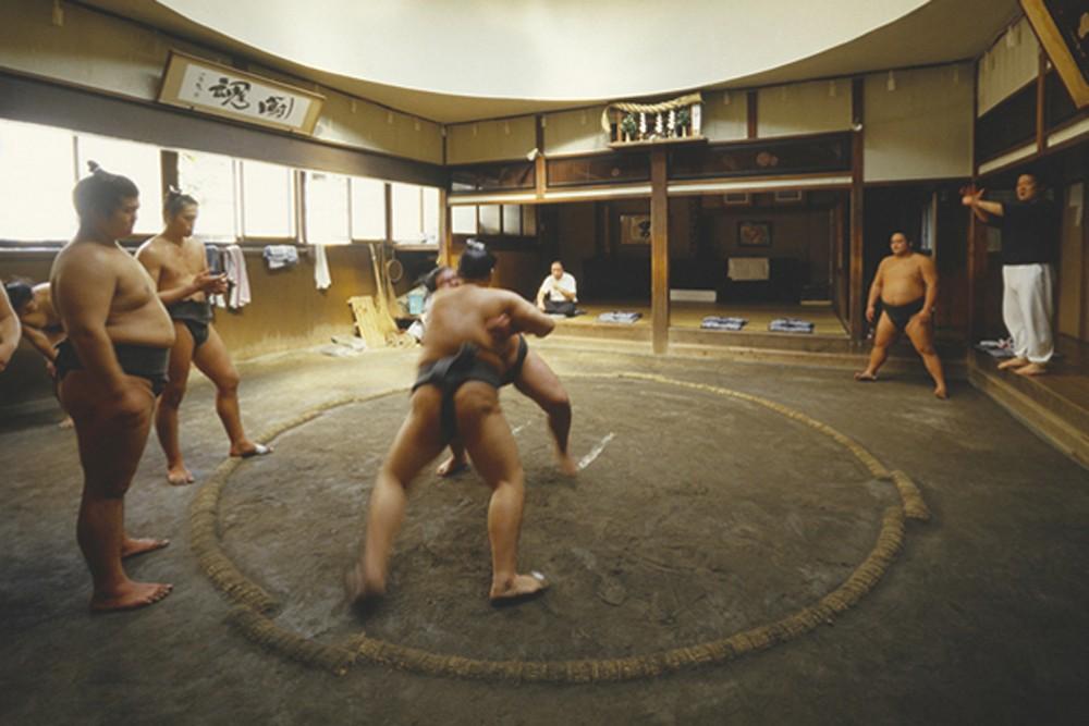 sumo wrestlers training in Tokyo Japan