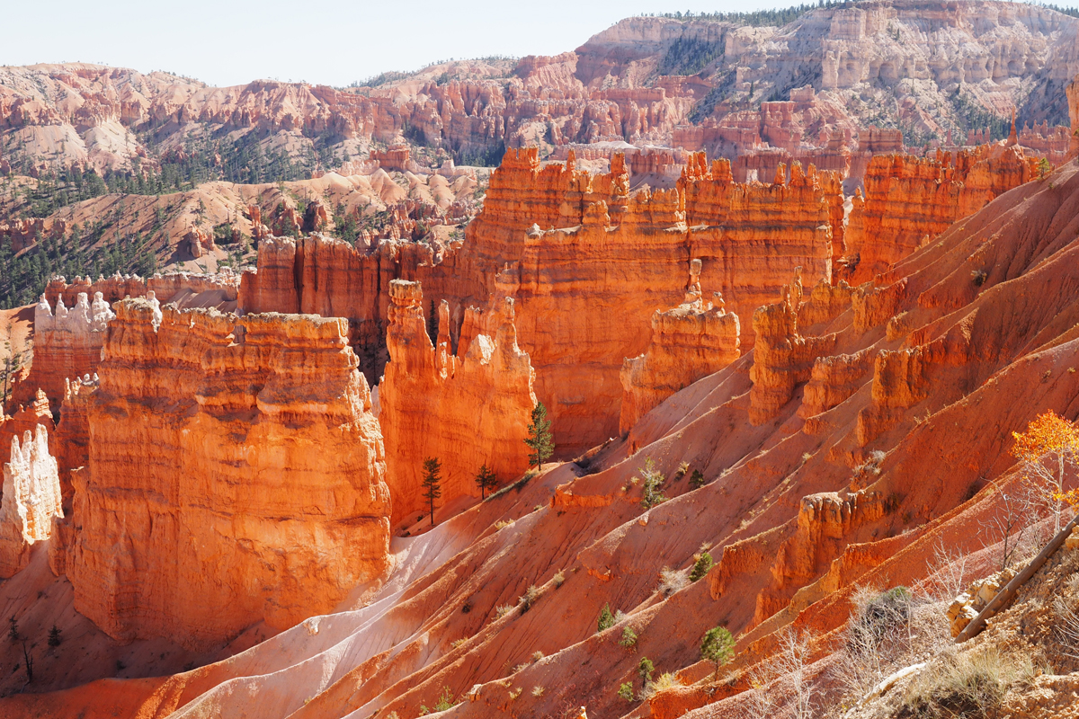 Bryce, Zion, Arches: Utah's National Parks Insider's Guide