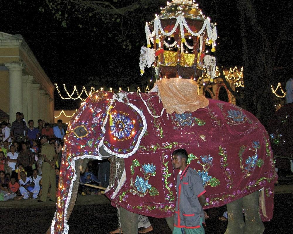 An elephant procession for Kandy Esala Perahera, in Sri Lanka