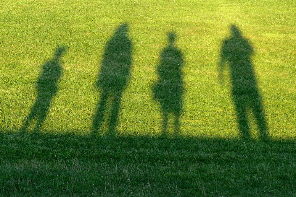 shadow of a family standing in green grass