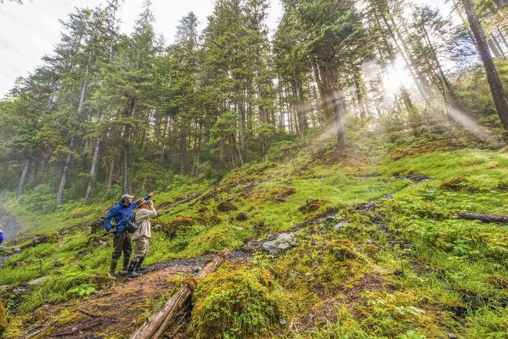 Cascade Creek Trail, Thomas Bay, Tongass National Forest, Southeast Alaska