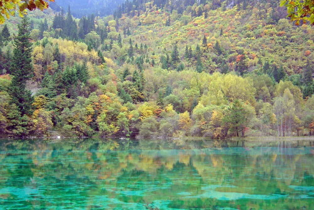 turquoise lake in China's Jiuzhaigou national park