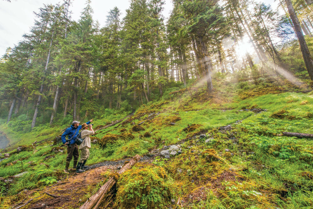 Hikers in Alaska's Tongass National Forest