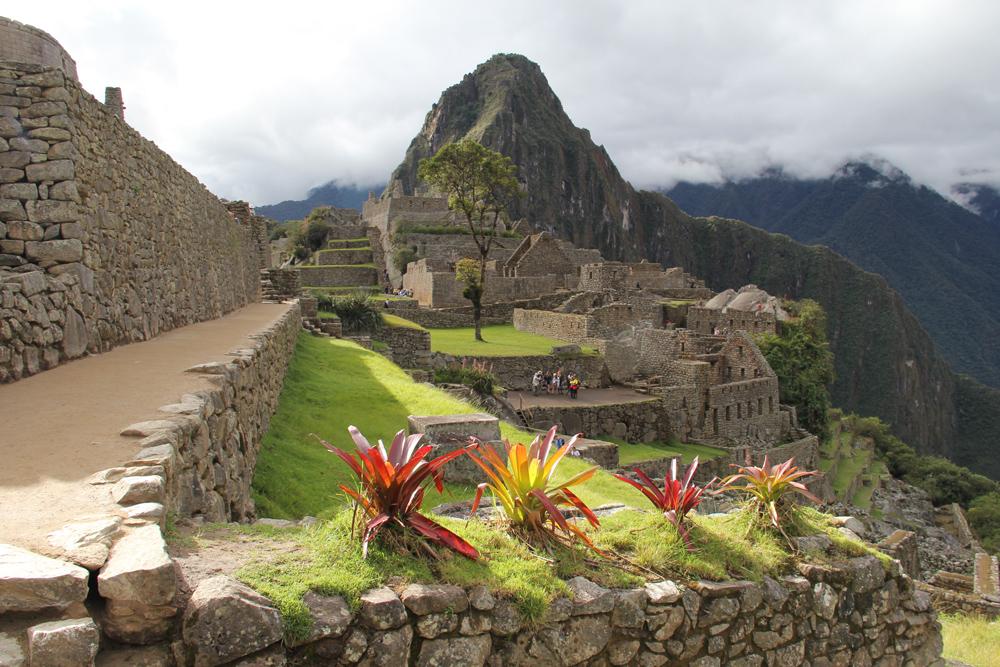 Springtime at Machu Picchu Peru