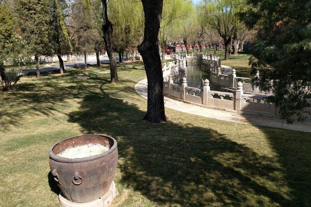 Forbidden City Chin