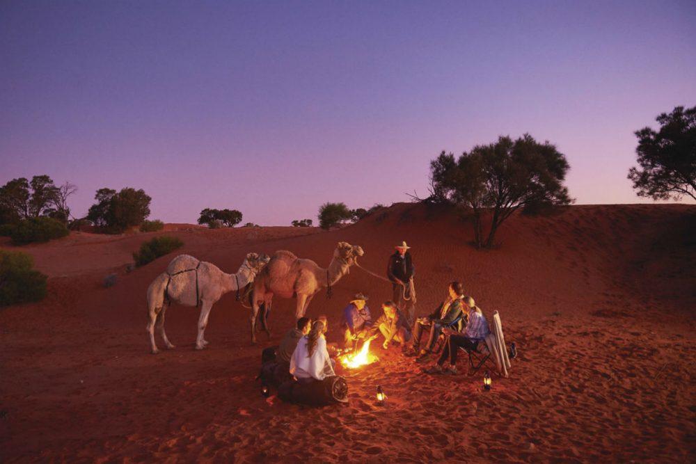 Beltana Camel Experience, Beltana Station Australia