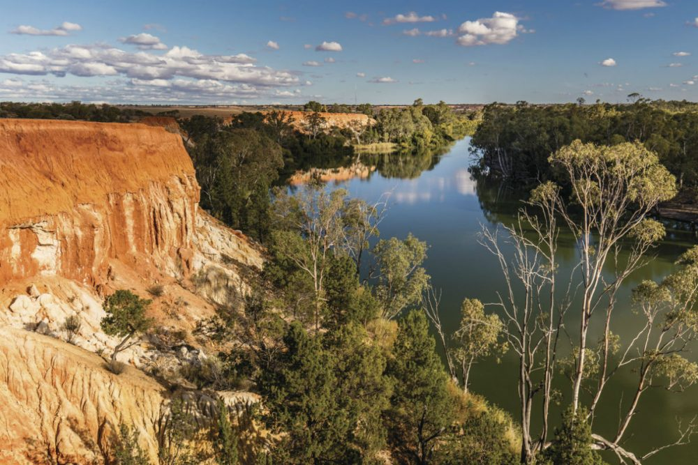 Murray River Walk, Headings Cliffs, SA Australia