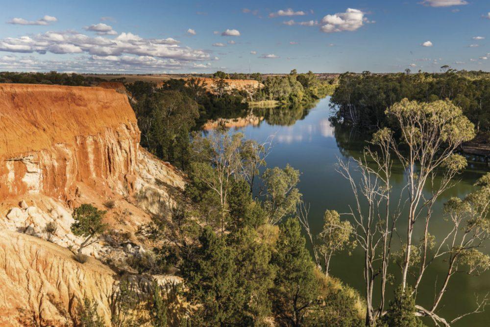 Murray River Walk, Headings Cliffs, SA Australia