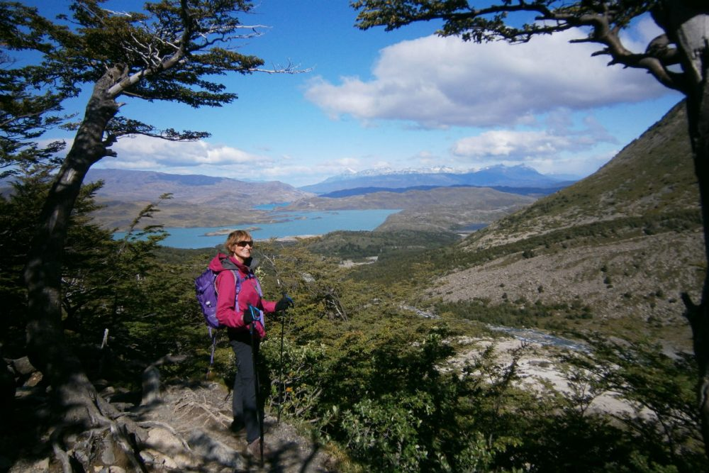 A view of Torres del Paine's lakes from the French Valley