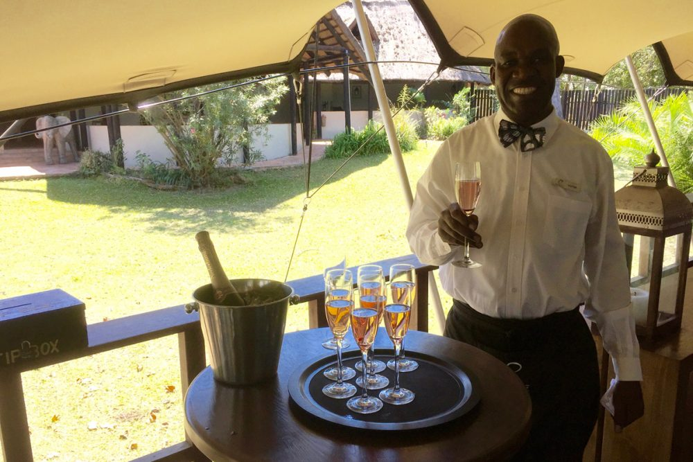 At the Elephant Café you're welcomed with champagne.