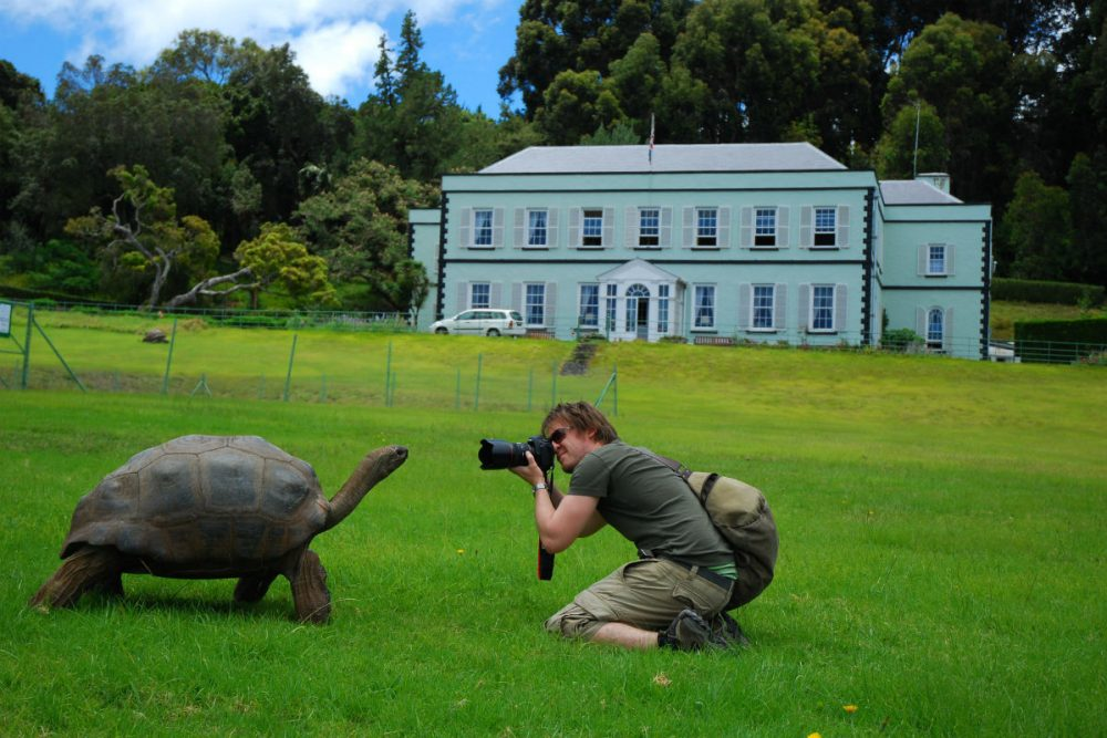 jonathan the giant tortoise at plantation house on St. Helena
