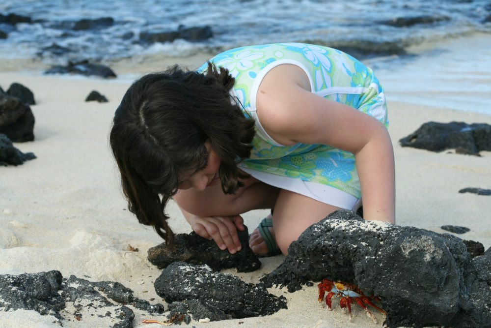 girl with crab on beach in the Galapagos Islands