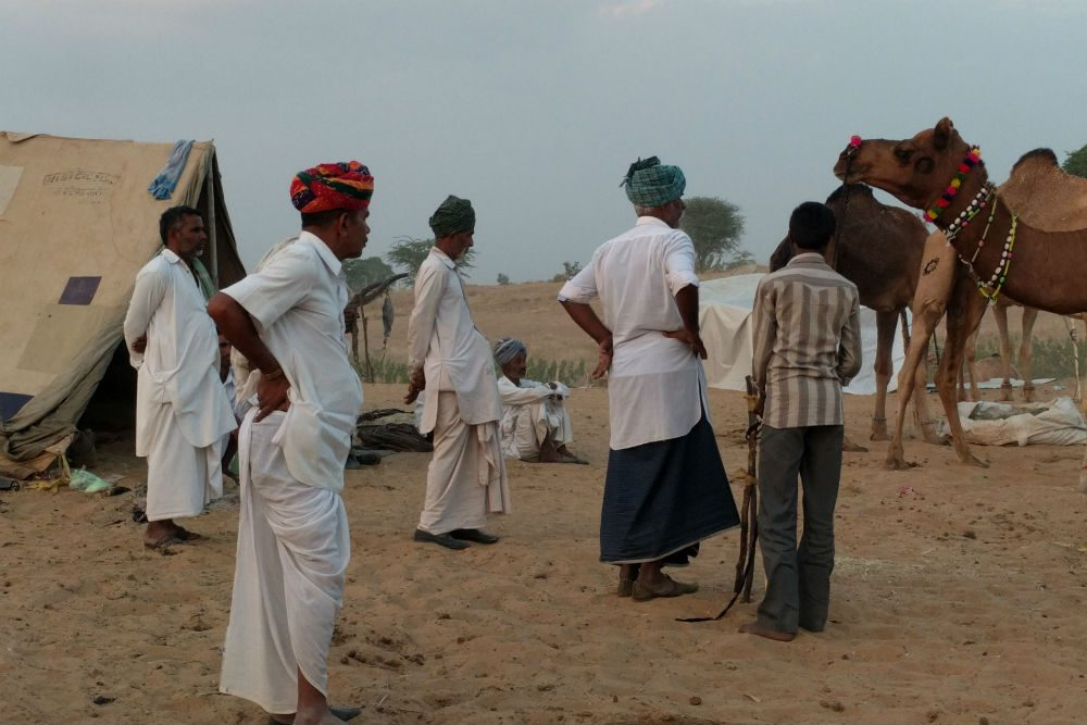 men buying a camel at the Pushkar Camel Fair India