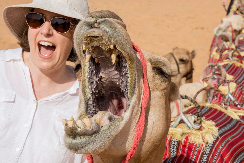 Abu Dhabi Qasr al Sarab Wendy and camel