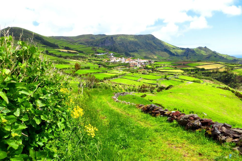 green fields on Flores island The Azores Portugal