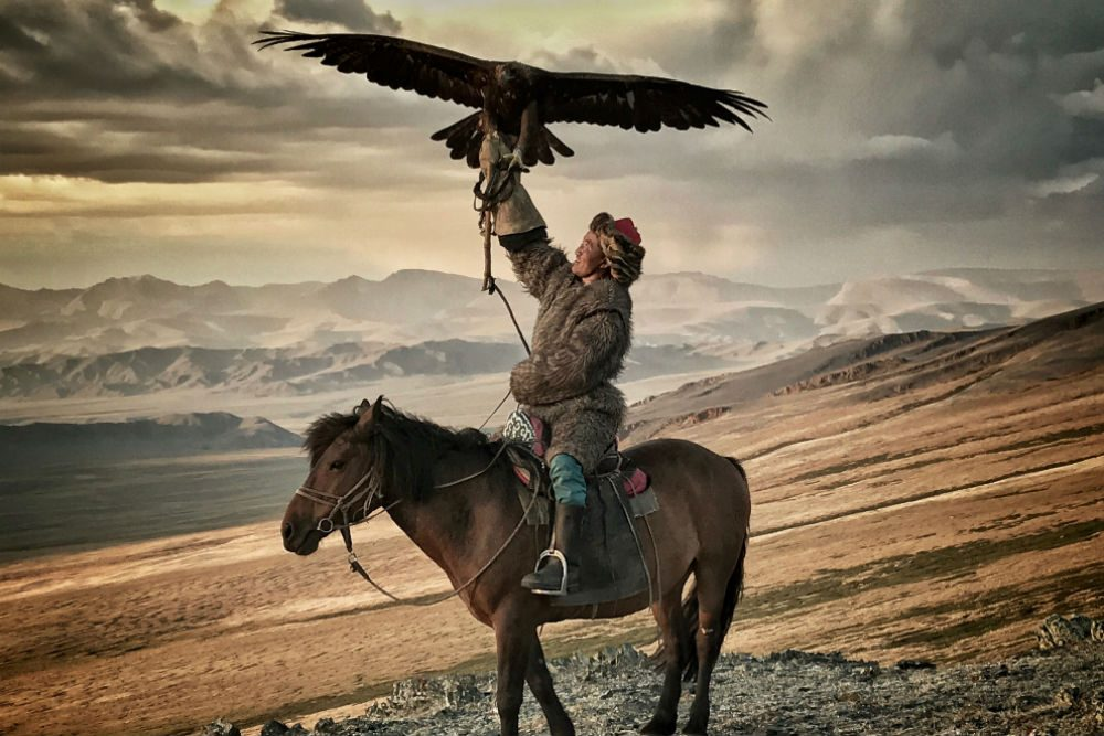 An eagle hunter on horseback in Mongolia holding an eagle