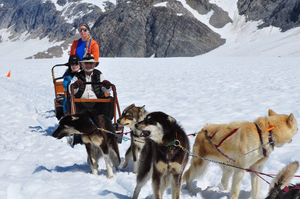 alaska dogsledding team