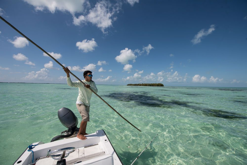 a fishing guide in Belize poles the boat into position to intercept a school of fish that would have been scared off by the engine.