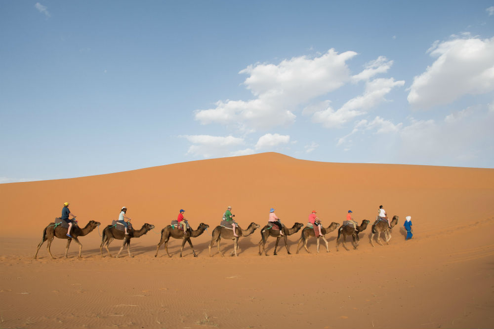 camel trek through the Sahara Desert, Morocco.