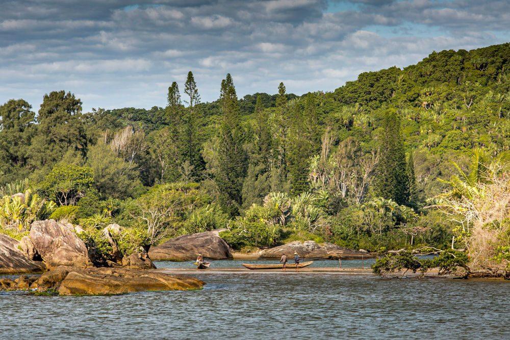 Madagascar's jungle and river
