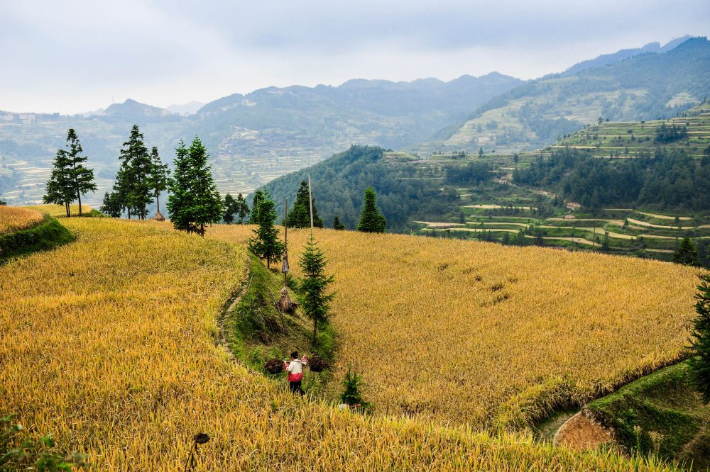 The landscape in rural Guizhou China