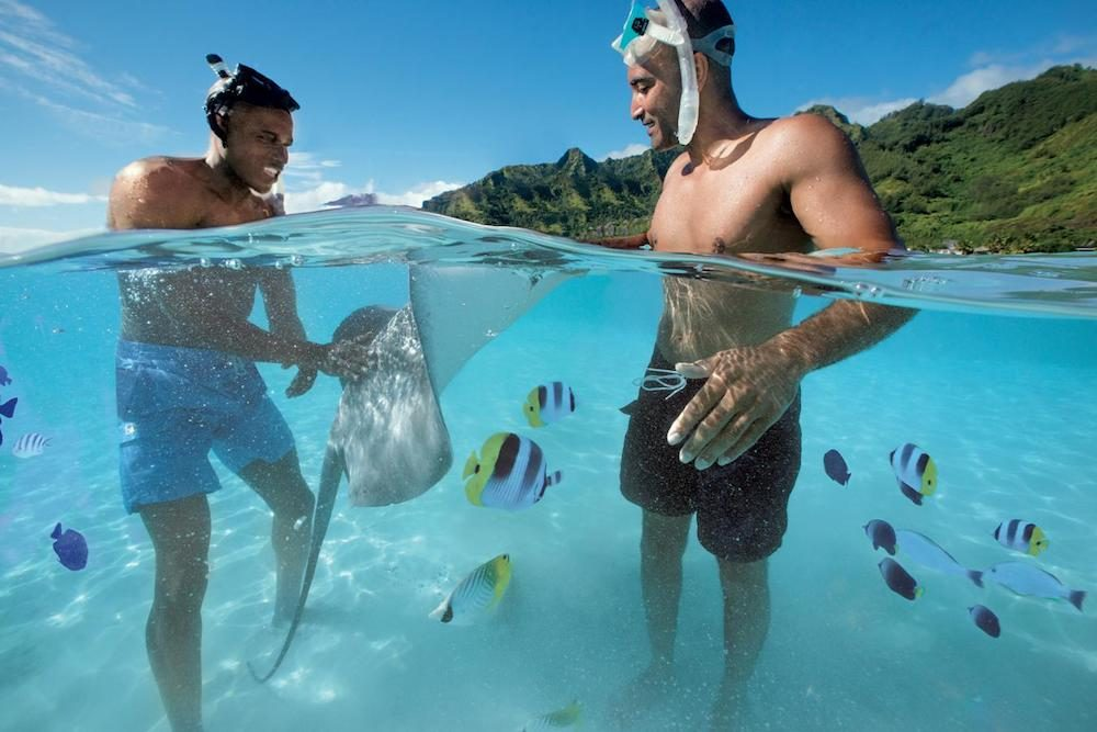 two cruise guests in snorkel gear standing in the water in Moorea with fish swimming around in French Polynesia