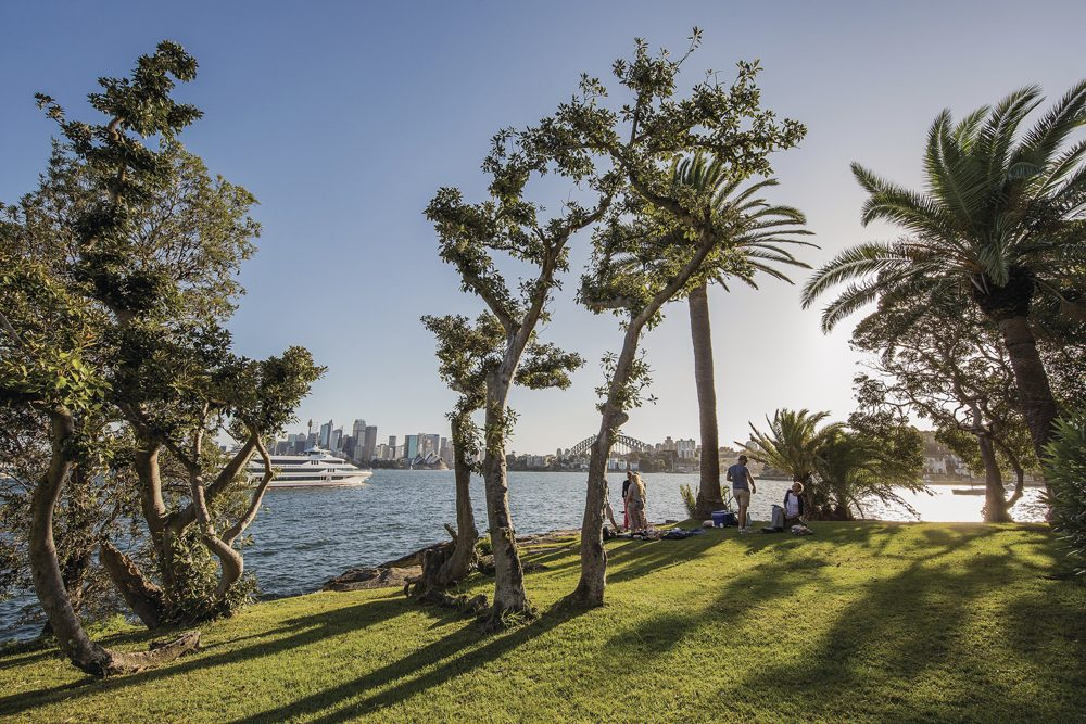 group enjoying a picnic in the Cremorne Park in Sydney, looking over Sydney Harbour in Australi