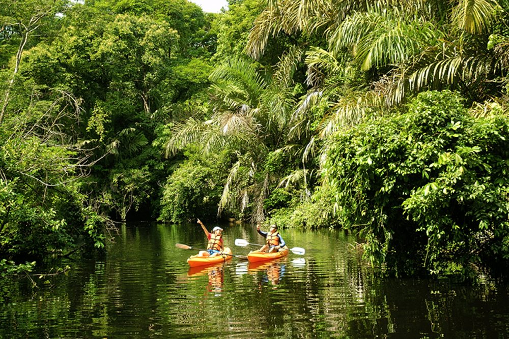 Kayaking Tortuguero National Park, Costa Rica