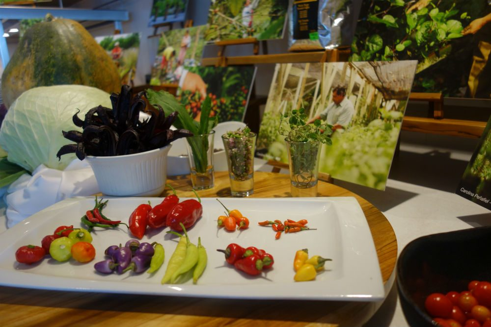 hot peppers, hibiscus flowers, and herbs sourced from Galapagos farms by Lindblad cruises