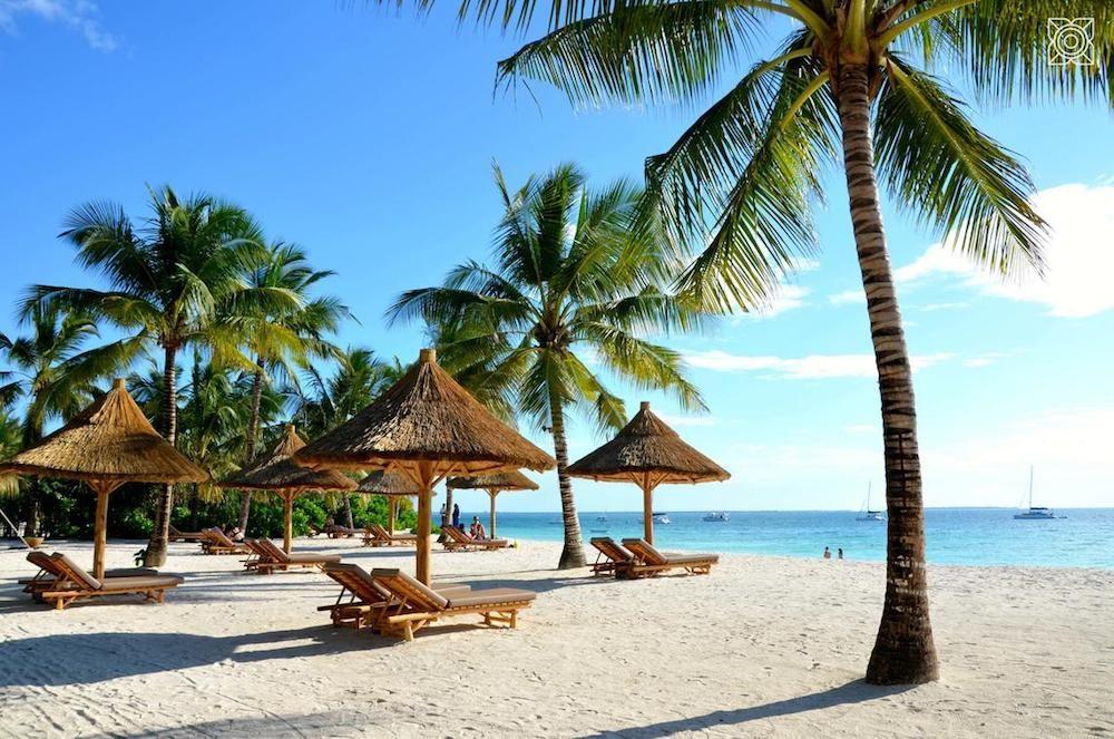 beach with chaises and palapas on Zanzibar island