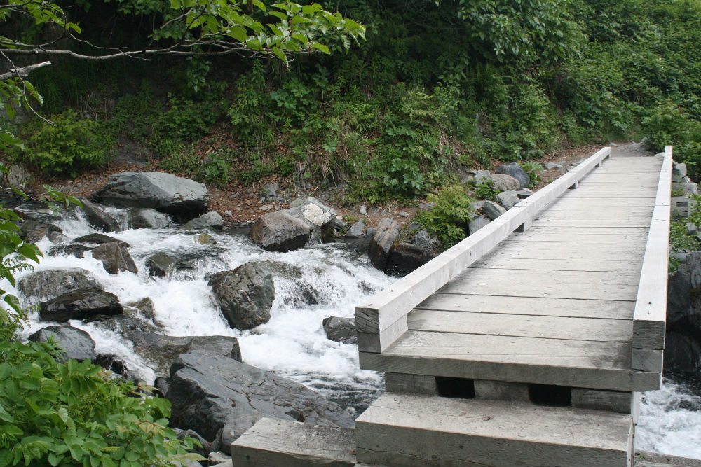 a wooden walkway over a stream in Kenai Fjords National Park, Alaska. Photo: NPS