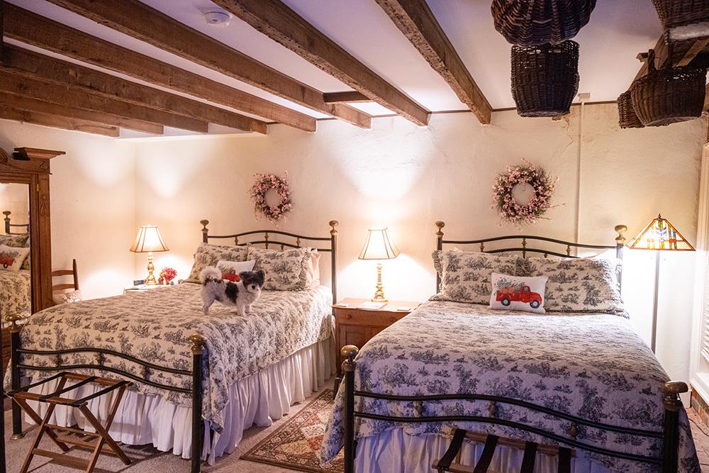 Richard Johnston Inn interior of guest room with dog Fredericksburg Virginia