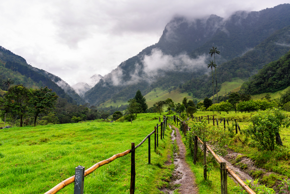 A view from the beginning of the hike towards Cocora Valley which is famous for its tall wax palm trees in Colombia