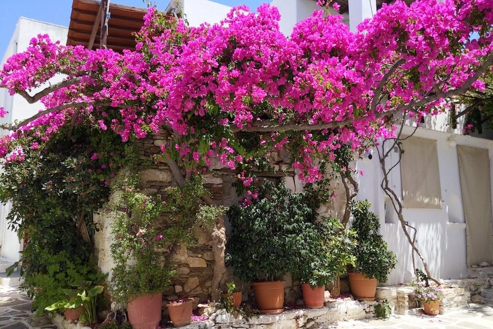 Paros Greece Podromos Village (