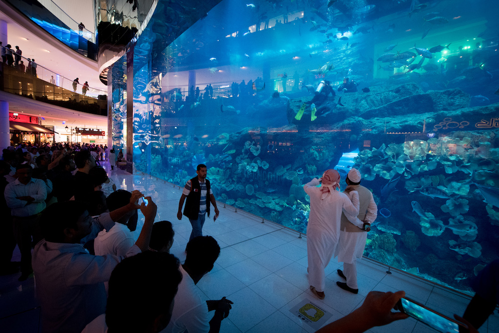 Dubai aquarium wall, with tourists looking through clear glass at a diver insider the aquarium